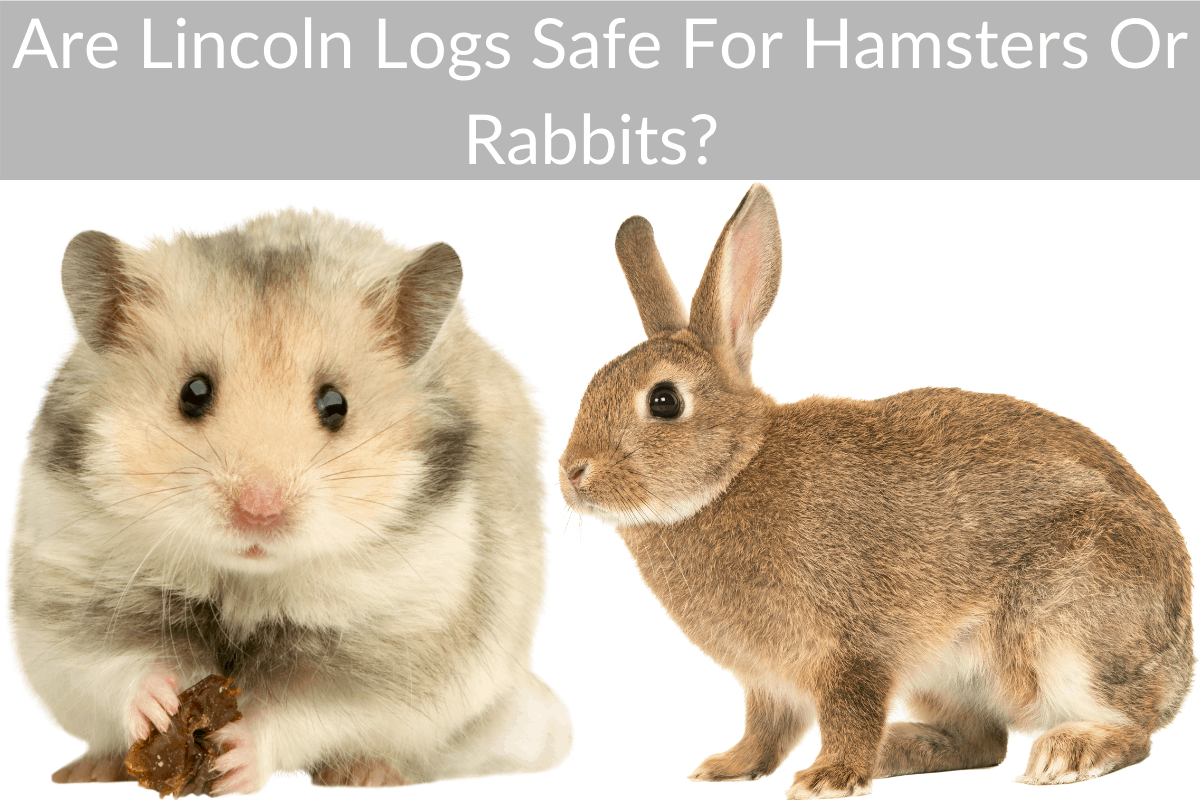 Are Lincoln Logs Safe For Hamsters Or Rabbits?