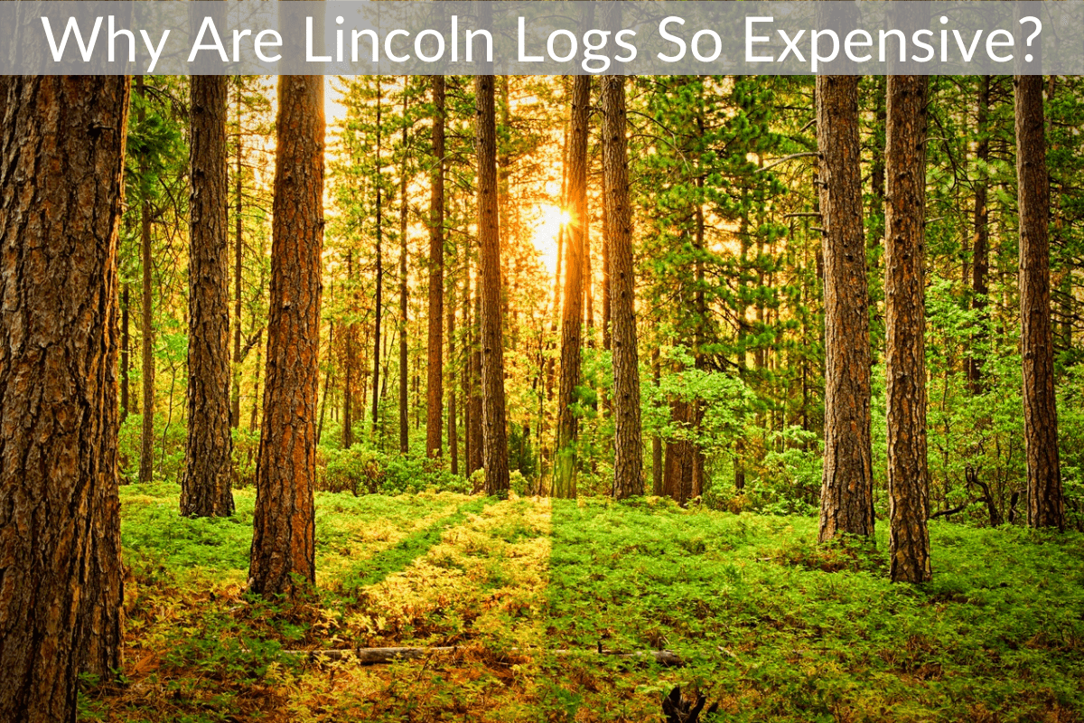 Why Are Lincoln Logs So Expensive?