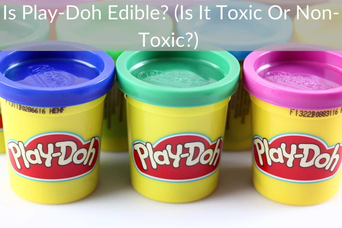 Is Play-Doh Edible? (Is It Toxic Or Non-Toxic?)