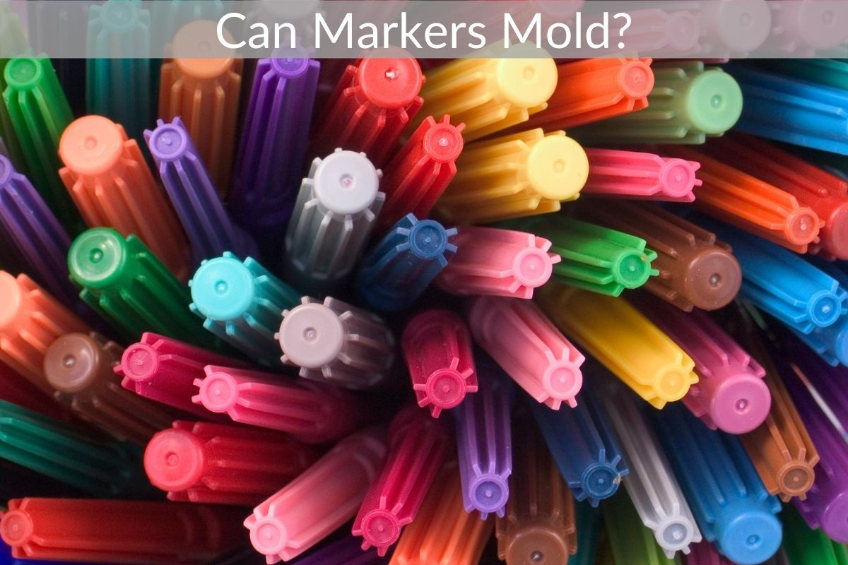 Can Markers Mold?