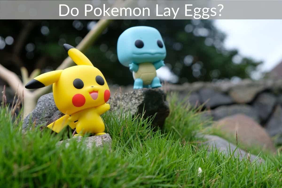 Do Pokemon Lay Eggs?